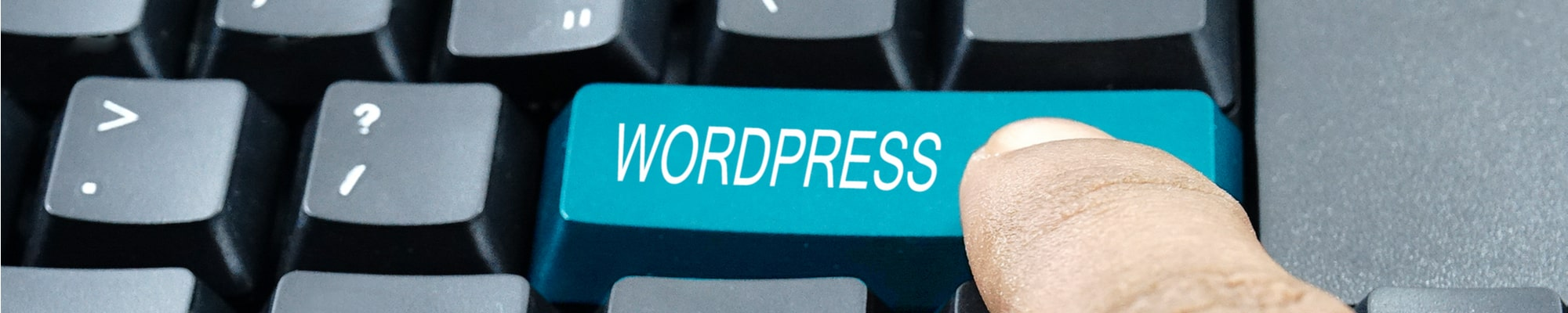 wordpress site building